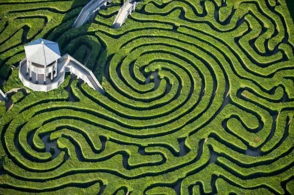 Зелёный лабиринт Longleat Hedge Maze в Англии (8 фото)