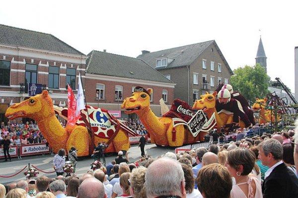 В Нидерландах прошёл парад цветов Corso Zundert 2014 (27 фото)
