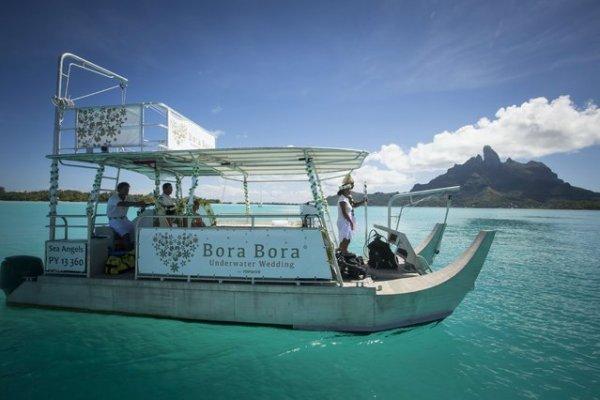 Подводная свадьба на Бора-Бора (7 фото)