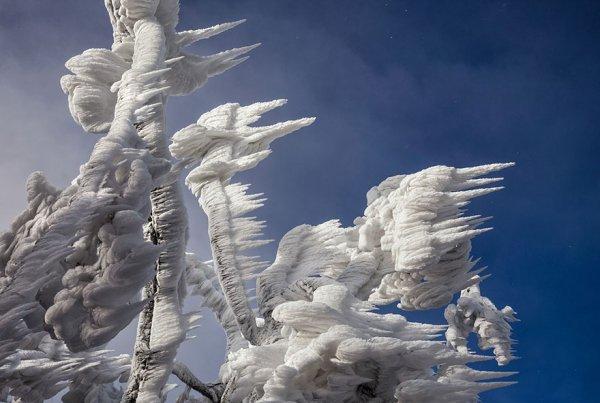10-дневная буря превратила гору в Словении в царство льда (9 фото)