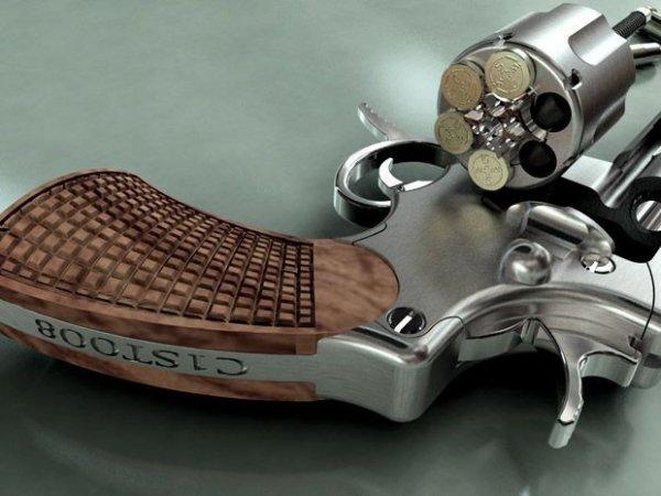 Самый опасный в мире револьвер (12 фото)