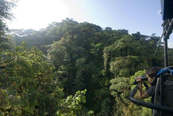 Подвесной велосипед над тропическим лесом в Mashpi Lodge (6 фото)
