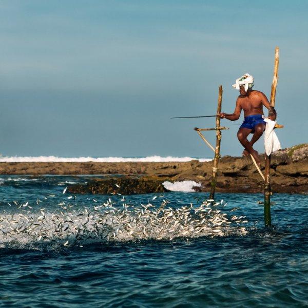 мешок для ловли рыбы