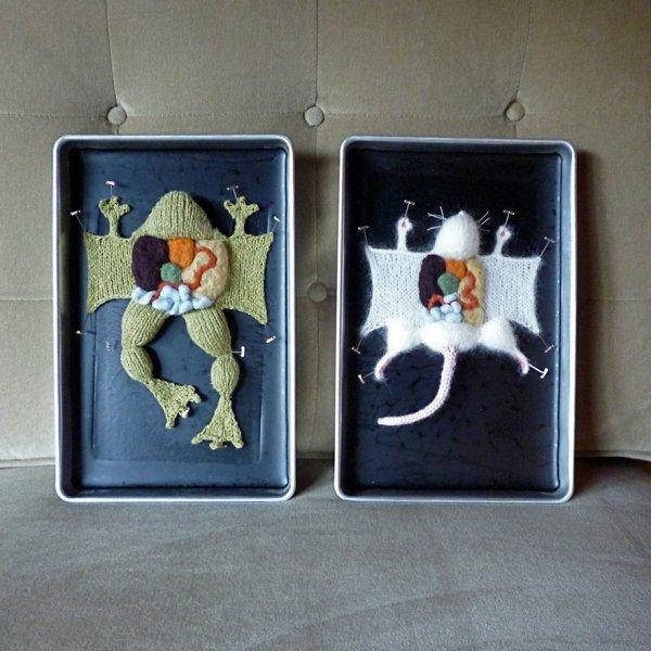 Вязаная анатомия Эмили Стоункинг (9 фото)