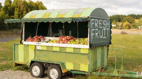 Фруктовый ларёк самообслуживания в Новой Зеландии (3 фото)