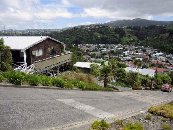 Самая крутая улица в мире находится в Новой Зеландии (9 фото)