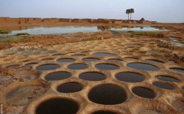 Добыча соли в пустыне Сахара (11 фото)