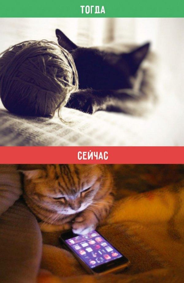 Как изменилась наша жизнь (10 фото)