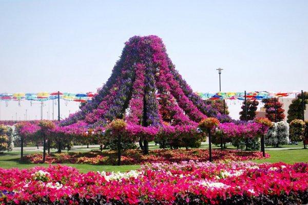 """""""Сад чудес"""" в Дубае (20 фото)"""