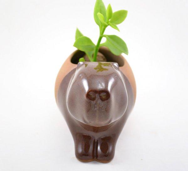 Керамические цветочные горшки Присциллы Рамос (11 фото)