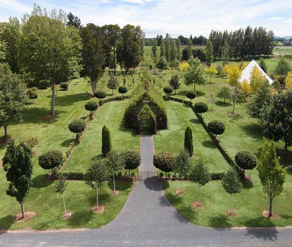 Зелёная церковь, выращенная из деревьев (9 фото)