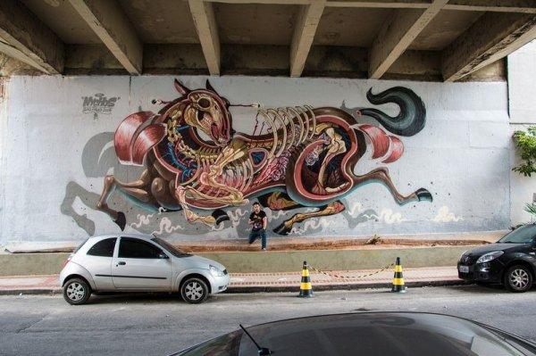 Анатомический стрит-арт австрийского художника Nychos (23 фото)