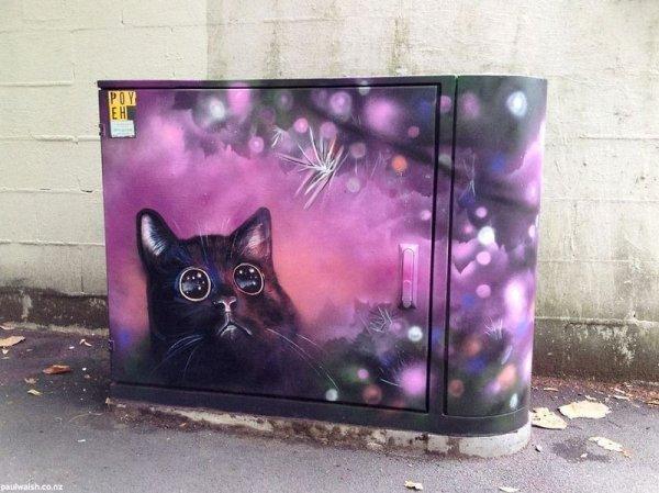 Рисунки популярных Интернет-мемов на улицах Окленда (16 фото)