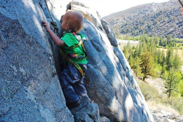 Двухлетний путешественник Бодхи Беннет (14 фото)