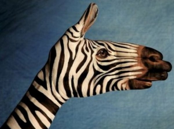 Рисунки животных на руках (10 фото)