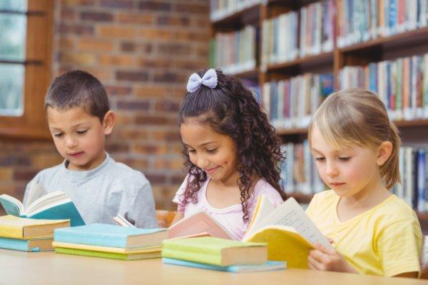 Учёные определили идеальный возраст для изучения иностранных языков