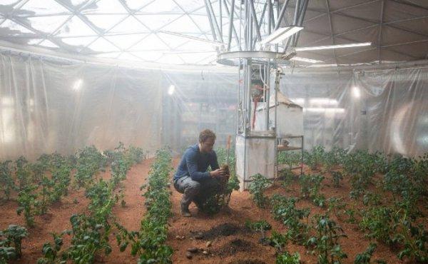 У марсианских колонистов будет возможность выращивать овощи