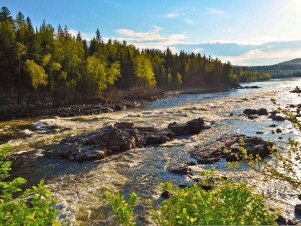 В России запустят новое реалити-шоу на выживание в условиях тайги