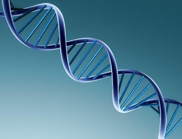 Ученые преуспели в извлечении ДНК вымерших животных