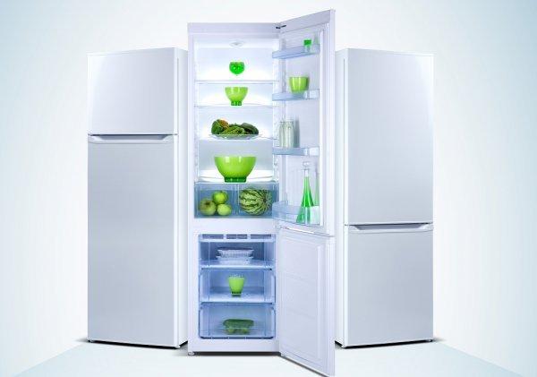 В России создадут уникальный холодильник