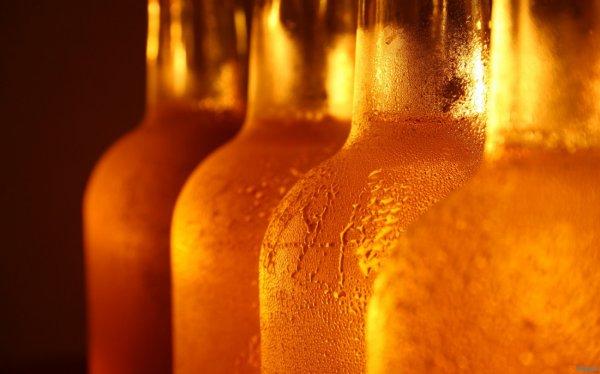 Студенты Стэнтфорда сварили пиво по древнему рецепту