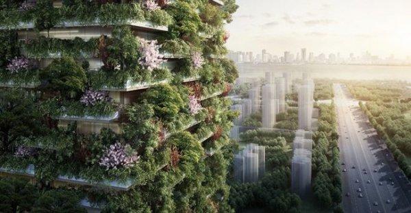 В Китае будут строить зелёные небоскрёбы