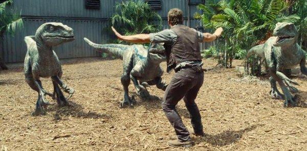 В Австралии обнаружили самое крупное скопление следов динозавров