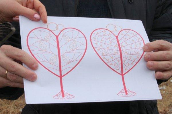 В Хабаровске возникнет дерево для замков молодожёнов