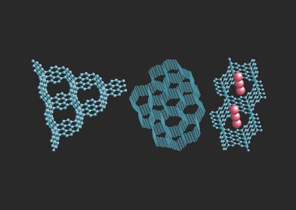 Учёные разработали методику получения водорода из биомассы