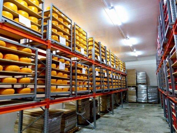 В Новосибирском регионе появится уникальный завод сыров