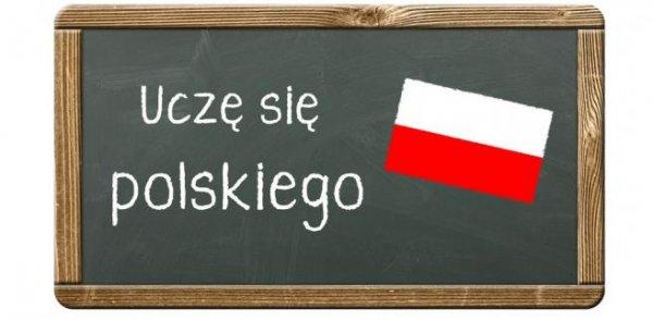 Изучение польского: чем отличаются курсы для поступления в вуз и для карты поляка