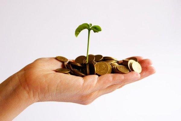 В Эстонии изучают безусловный главный доход
