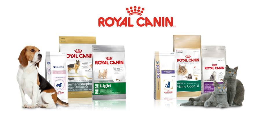 Корм royal canin баннер