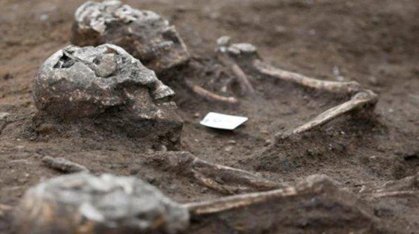 В одной из провинций Китая нашли остатки очень древних людей