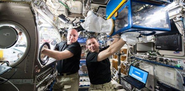 НАСА трудится над разработкой импланта, предотвращающего атрофию мышц в космосе