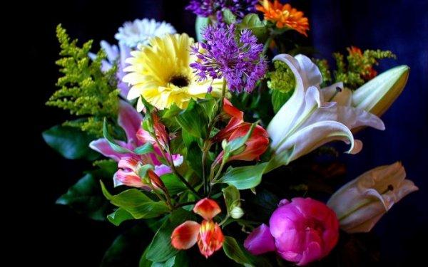 Причины популярности сервисов доставки цветов