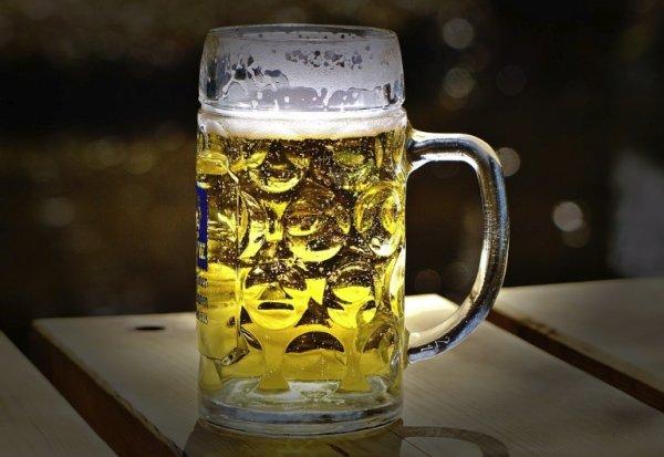 К 2099 году пиво может стать дефицитом