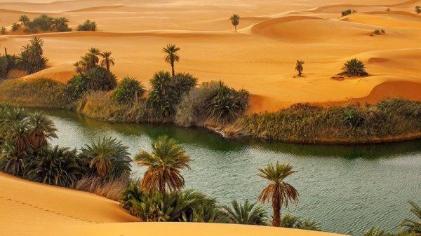 В Сахаре хотят создать искусственные водоёмы