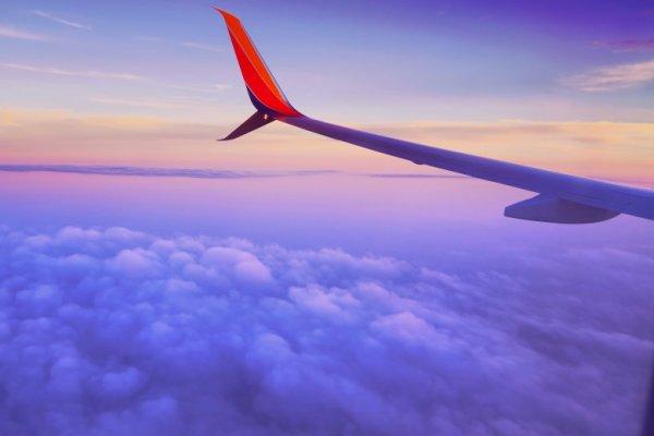 Авиакомпания будет закупать топливо, производимое из растений